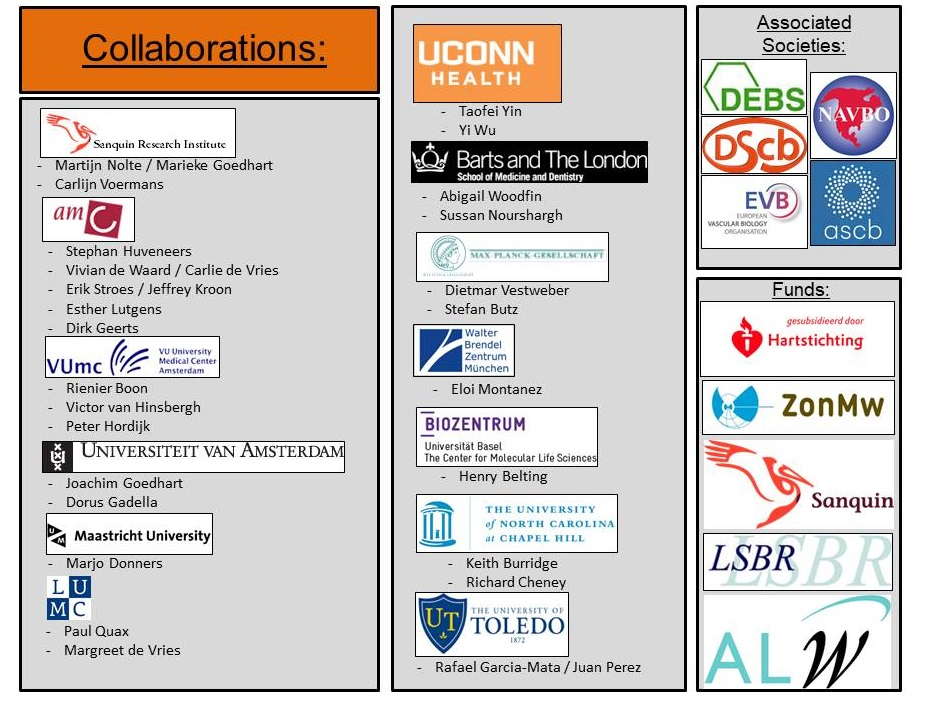 MCB collaboration partners